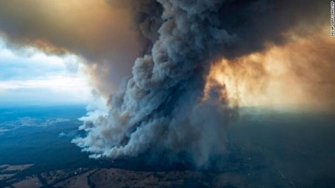 Australia Wildfires: What is causing them and What does it mean for Australia?