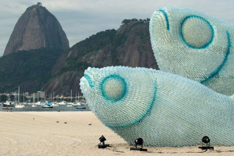 The Journey of Plastic Bottles Around the World