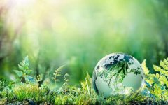 India and Europe cut emissions by 26% and 27% respectively.- Economic Times, May 22, 2020