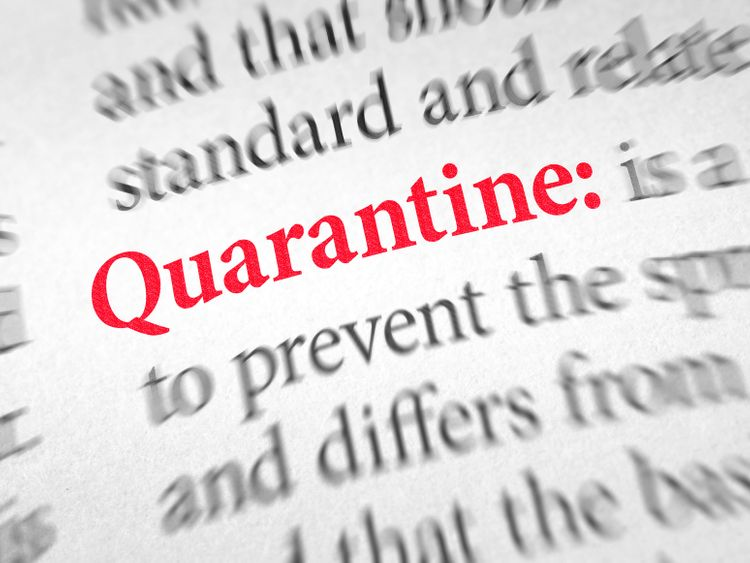"""The term """"Quarantine"""" stands out due to the current situation as it is used frequently."""