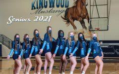 The 2021 senior volleyball girls from left to right: Katelyn Tillis, Ashlyn Baker, Kaitlyn Morgan, Megan Wilson, Temi Areola, Skylar Roth, Medina Khoury, and Jordan Rambo. Photo courtesy of Steve Brack Photography